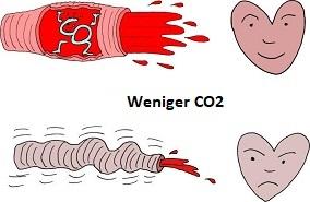 Weite Gefäße durch ausreichend CO2, enge Gefäße durch CO2-Mangel