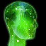 brain-epilepsy-seizures
