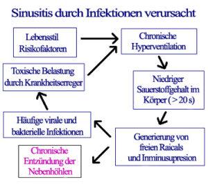 Sinusitis-Mechanismus